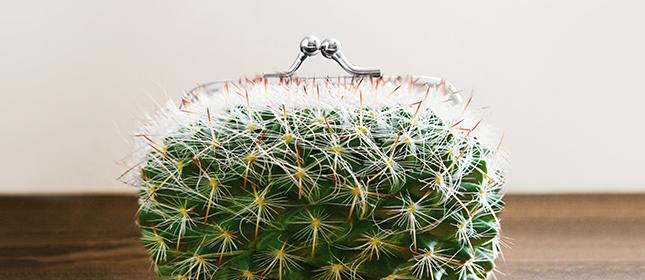 Kaktusportemonnaie Negativzinsen