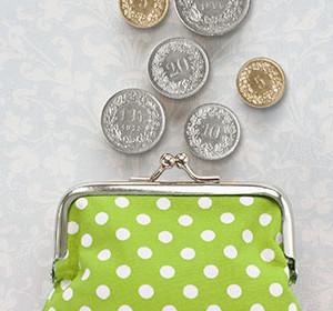 Steuertipps Teil 1 - Geldbeutel hellgrün