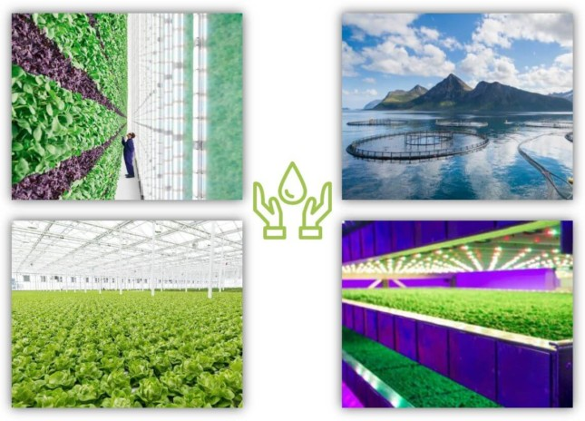 Image Controlled Environment Agriculture