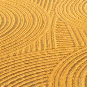 Wheat circles on a field