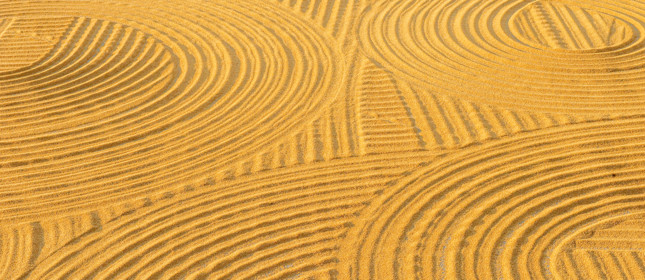 Wheat circles on a field
